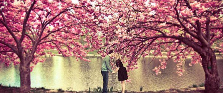 Zašto se najčešće zaljubljujemo u proleće?