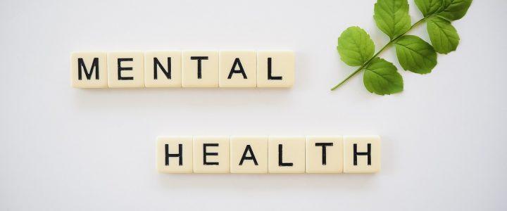 Higijena života kao prevencija mentalnih bolesti – dr Japalak za portal BGonline